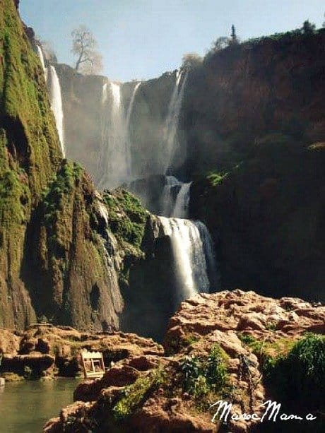 Day Trips from Marrakech: Ouzoud Falls