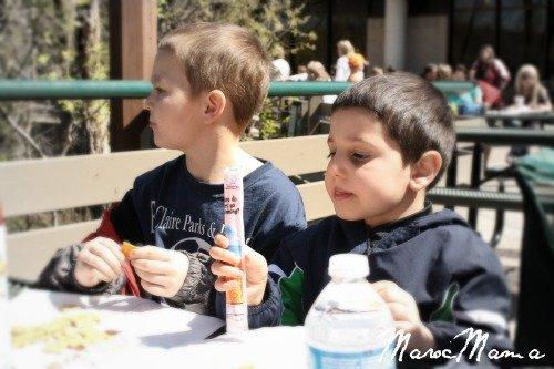 Minnesota Zoo Kids