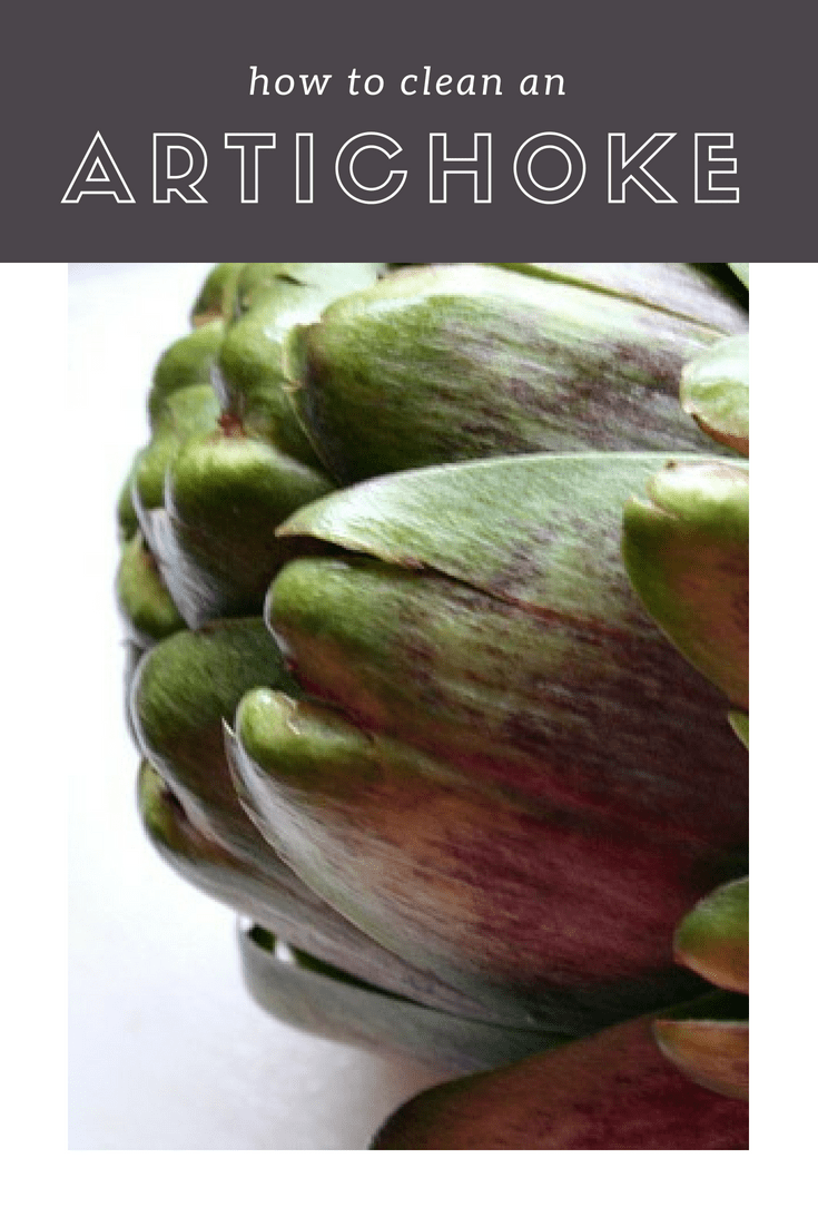 How To Clean An Artichoke