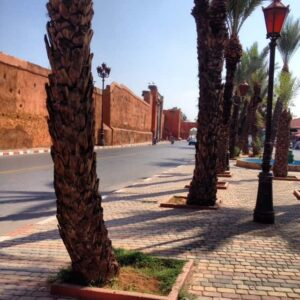 Marrakech Kasbah Gates