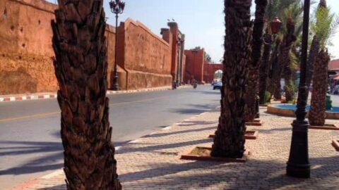 This Week In Marrakech : What I've Been Doing