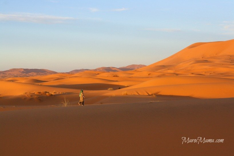 Sahara Walker