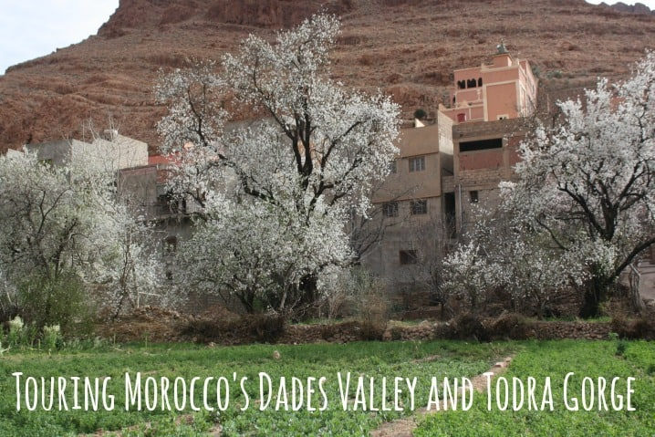 Touring the Todra Gorge and Dades Valley