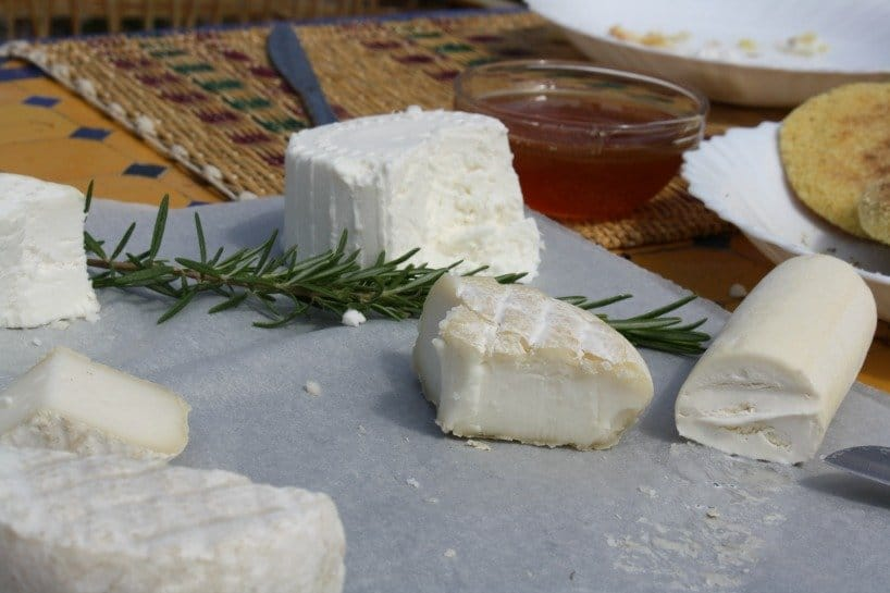 Cheese Tasting in Fez