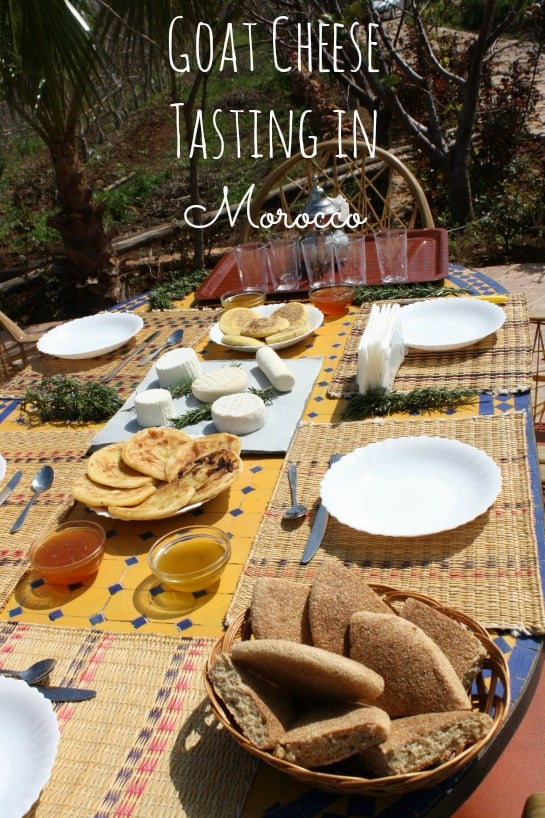 Goat Cheese Tasting Morocco