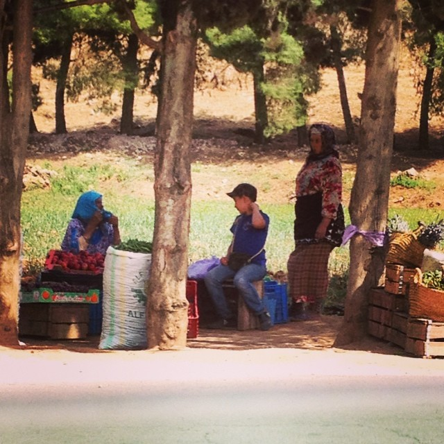 This impromptu #market was set up on the roadside between Sefrou and Immouzer #Morocco. Local farmers sell what's in season. All delicious. #latergram #passportpartyproject #day19 #rural #farm