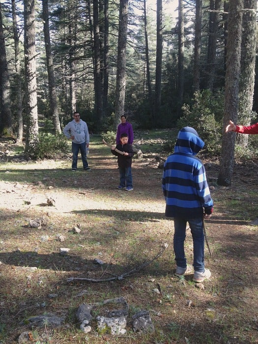 Visiting Ifrane Morocco Forests