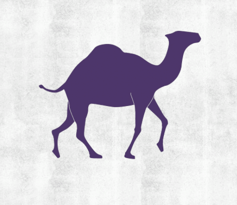 The Purple Camel Hostel Marrakech