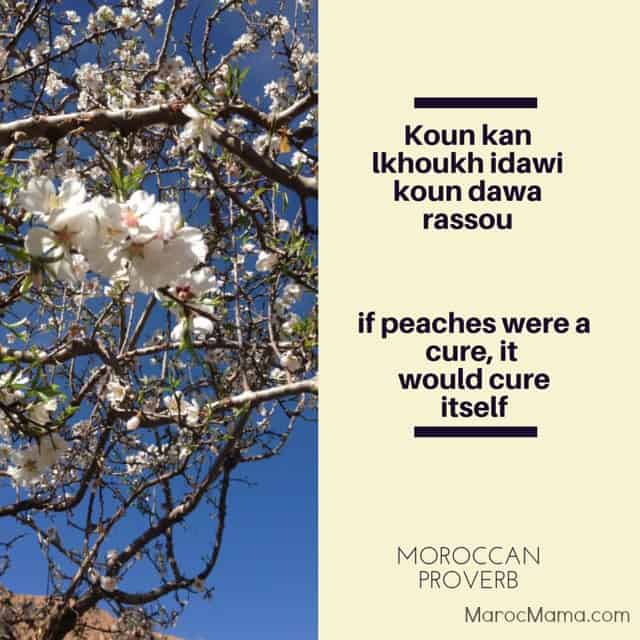 If peaches were a cure, it would cure itself - Moroccan proverb | MarocMama.com