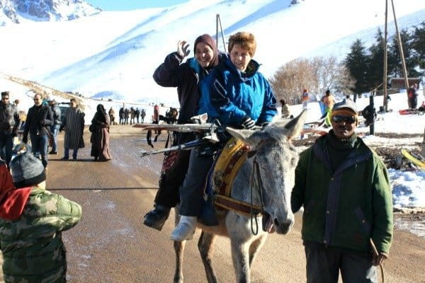 Mule to the Ski Lift in Oukaimden