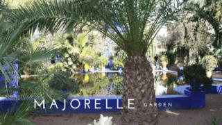 Marrakech's Jardin Majorelle