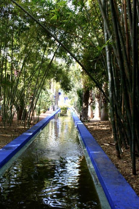 Majorelle ponds and trees