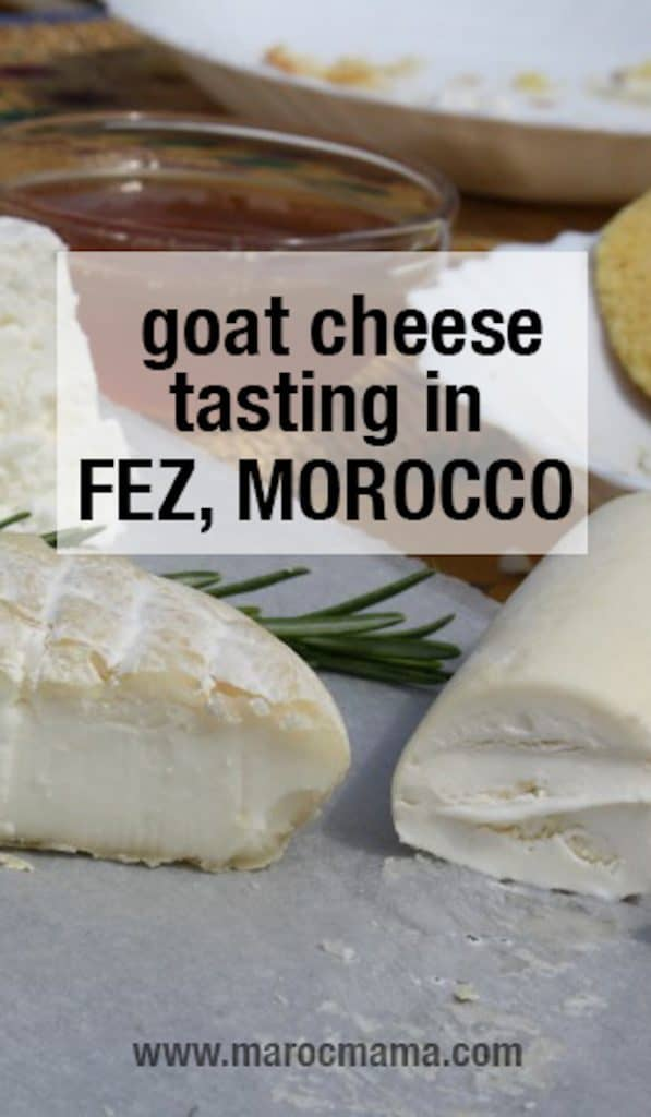 Goat Cheese Tasting in Morocco