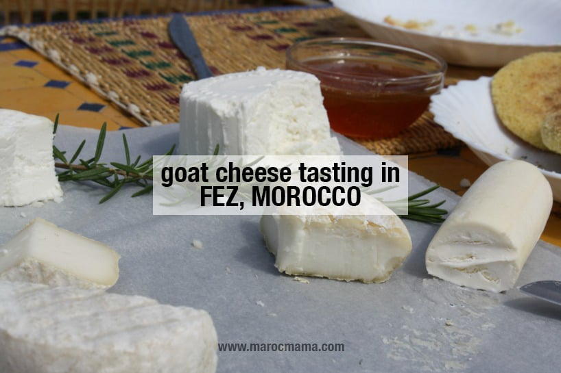 Organic Goat Cheese Tasting in Morocco
