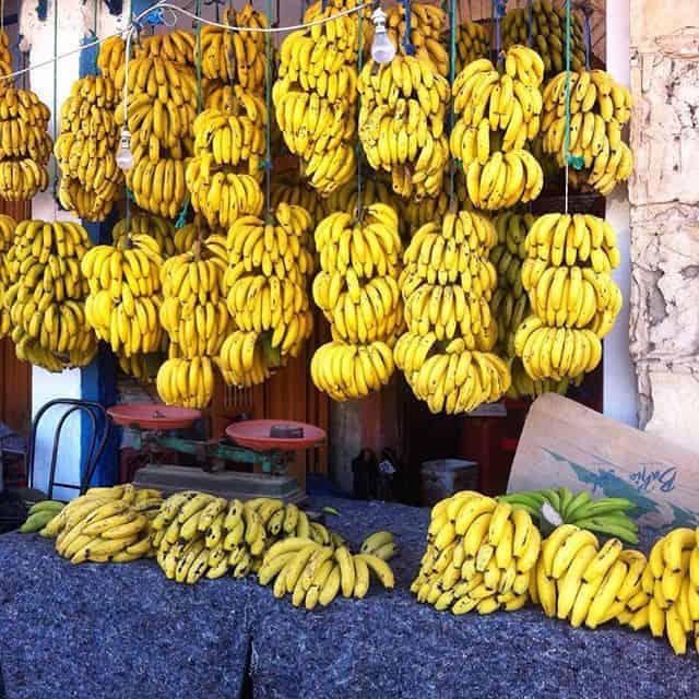 banana-village-morocco