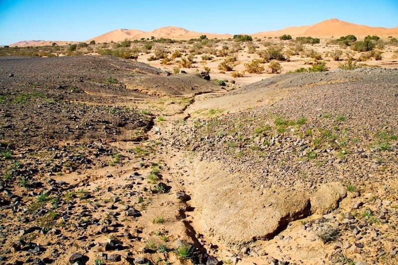 morocco-fossil-field