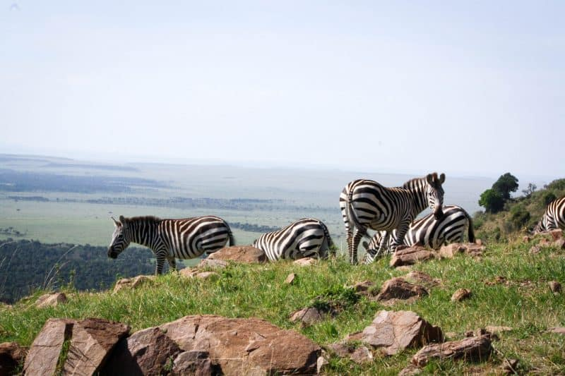 20 Pictures To Inspire You to Visit Kenya