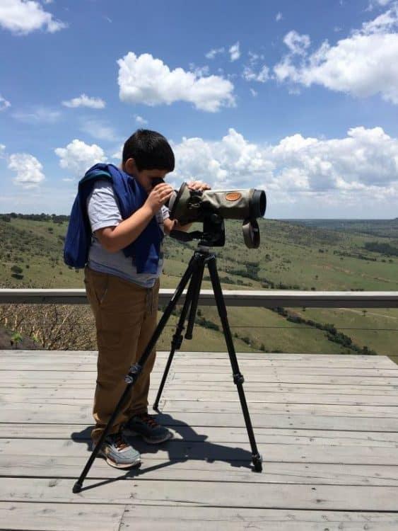 Viewing wildlife in Kenya