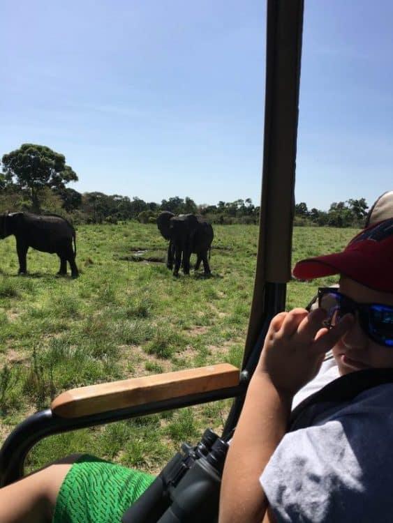 In the safari jeep Masai Mara Kenya