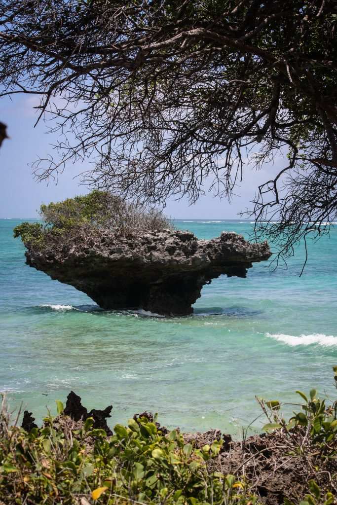 Outcropping in Indian Ocean Kenya