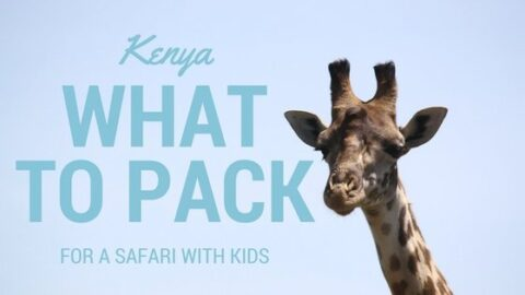 What to Pack for a Safari with Kids
