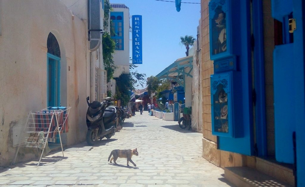 17 Muslim Countries to Visit in 2017 - Tunisia