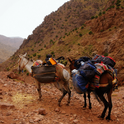 5 Hikes You Should Take in Morocco