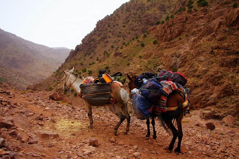 Jbel Saghro Morocco
