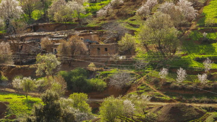 Visiting Morocco in March