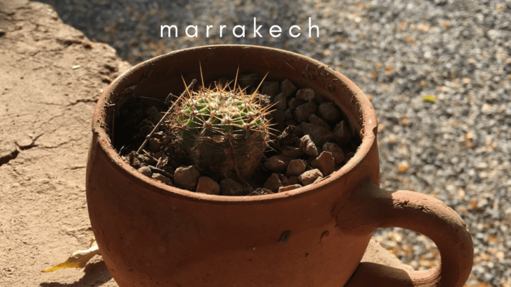 9 Ways to Spark Your Creativity in Marrakech