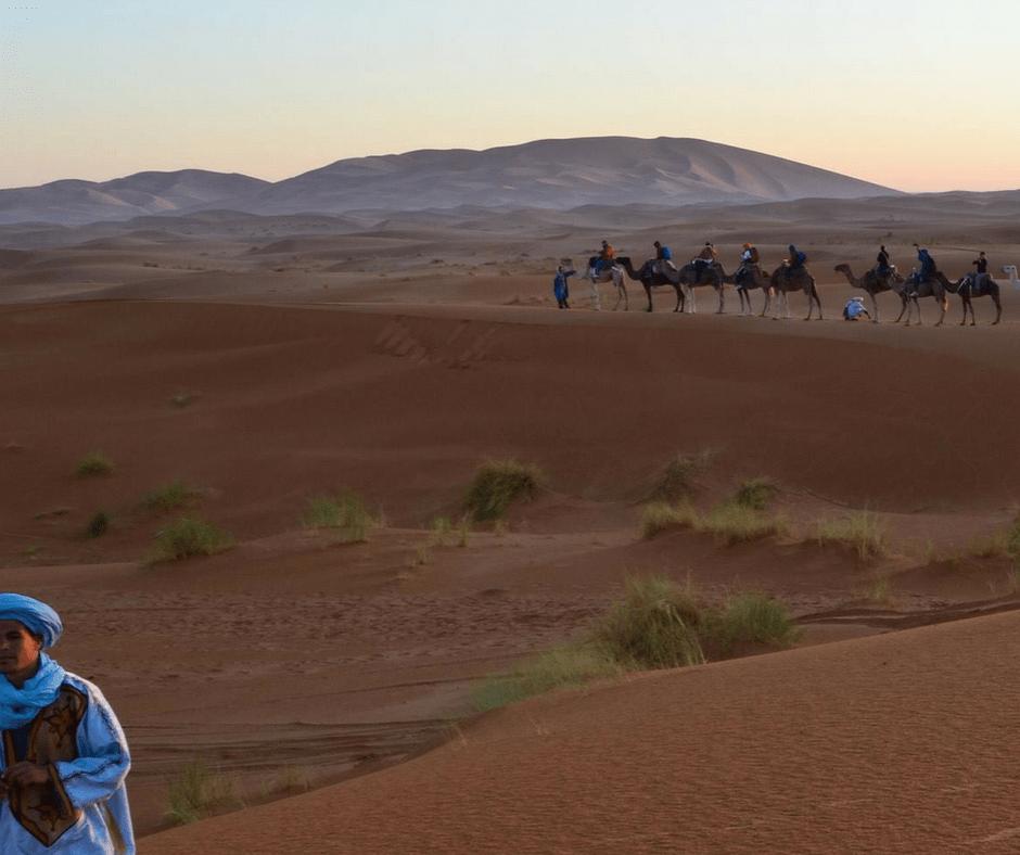 Sahara Desert Camel Caravan