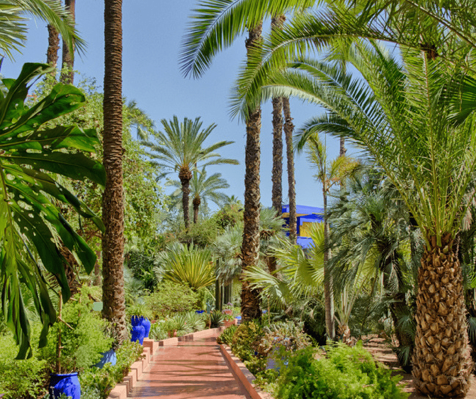 YSL Majorelle Garden