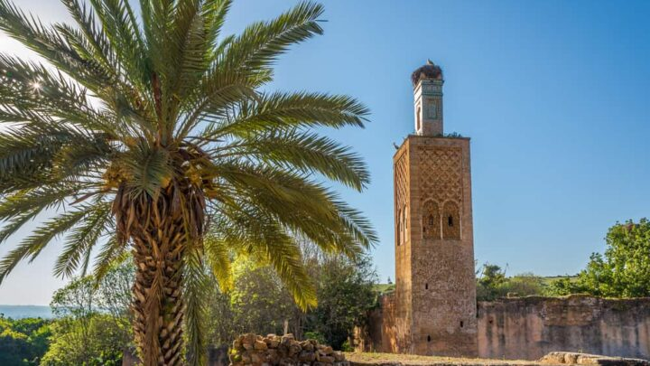 16 Things to do in Rabat with Kids