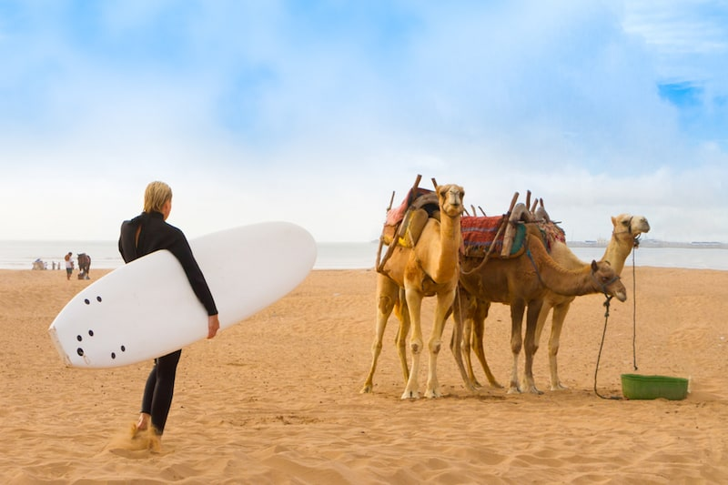 Where to Go to Surfing in Morocco