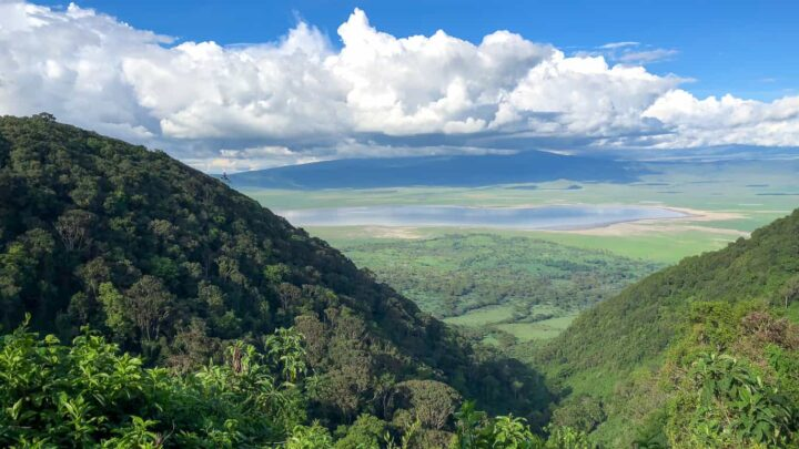 Top Questions about Visiting Tanzania on Safari