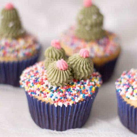 Sahara Cactus Cupcakes
