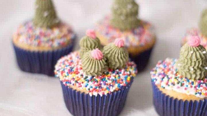 Fun and Easy Sahara Cactus Cupcakes
