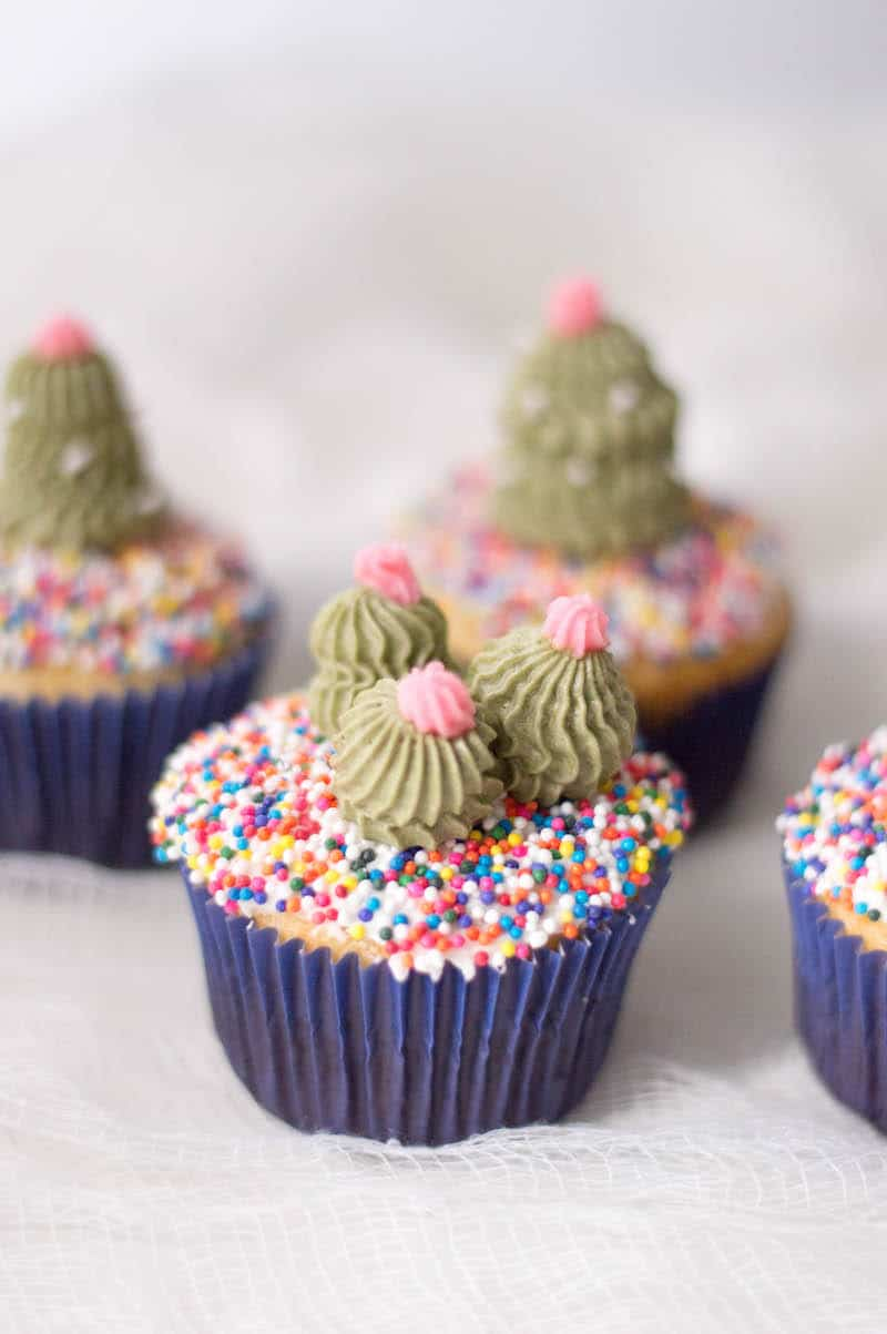 Fun And Easy Sahara Cactus Cupcakes Marocmama