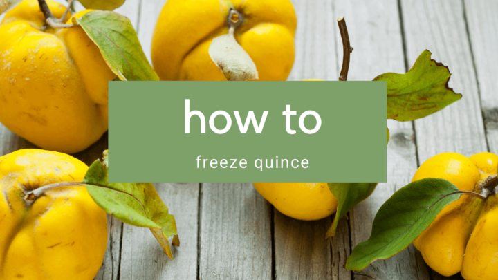 How to Freeze Quince