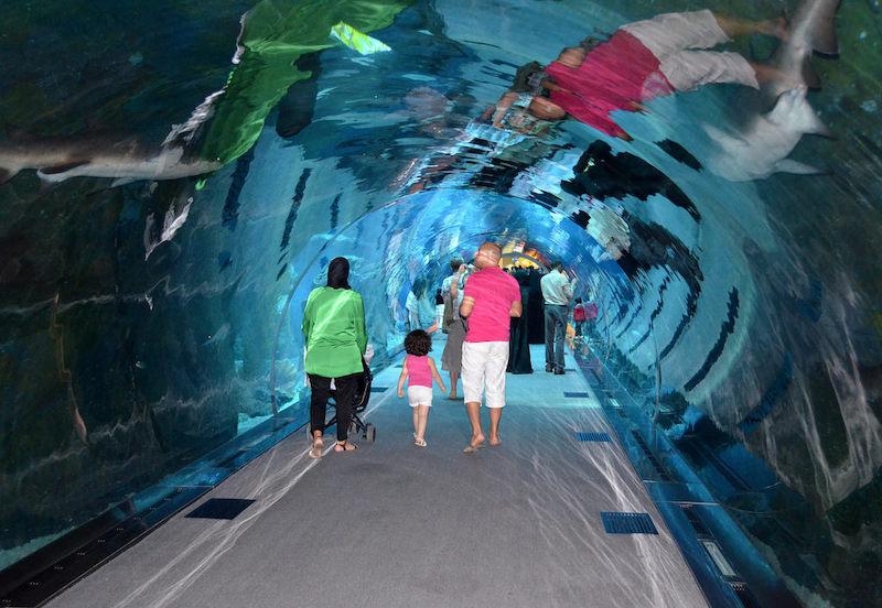 Family walks through an aquarium tunnel