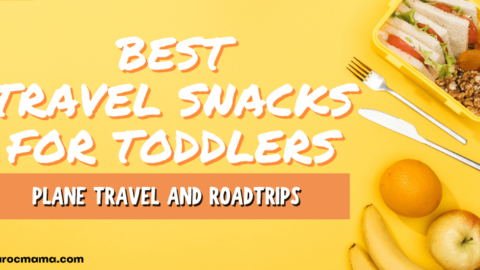 Best Toddler Food for Travel: Make Roadtrips and Plane Travel a Breeze