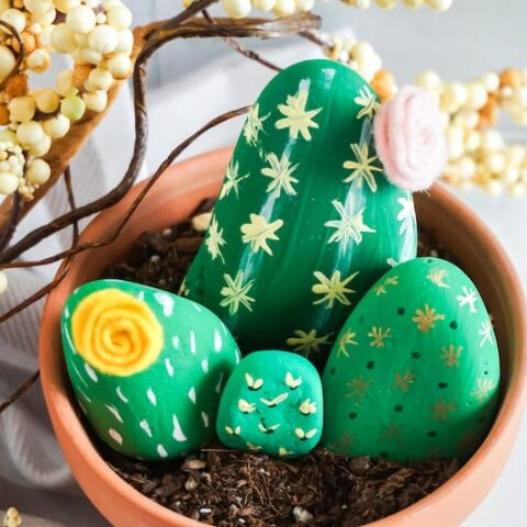 Create Your Own Moroccan Cactus Painted Rock Garden!