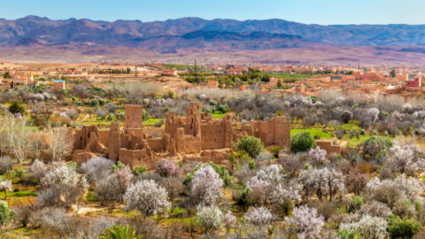 Rose Festival Morocco & the Valley of Roses