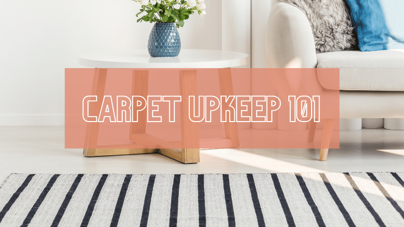 The FOUR Things You Need to Know to Keep Your Moroccan Rugs Lasting Longer